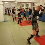Ju-Jitsu FreeStyle Mieszane Sztuki Walki